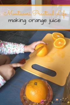 Montessori Practical Life Lesson: Squeezing Orange Juice