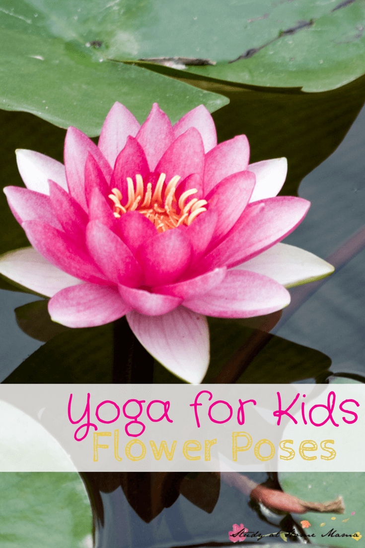 Yoga for kids flower poses sugar spice and glitter yoga for kids flower poses how to safely do yoga with kids including mightylinksfo