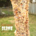Bird Seed Slime