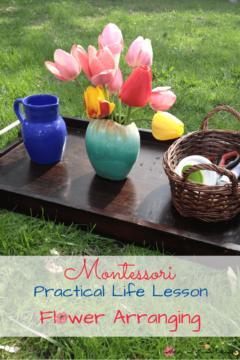 Montessori Practical Life Lesson: Flower Arranging