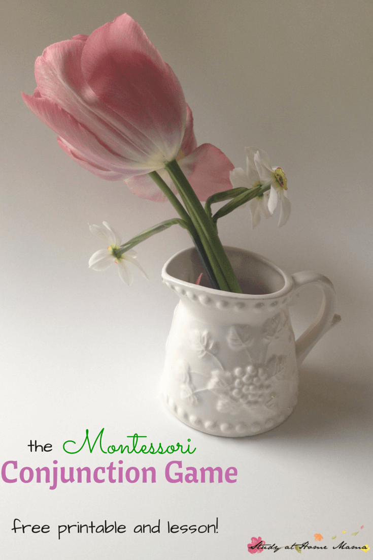 The Montessori Conjunction Game - teach your child how to use conjunctions with this fun language game using flowers plus a free printable!