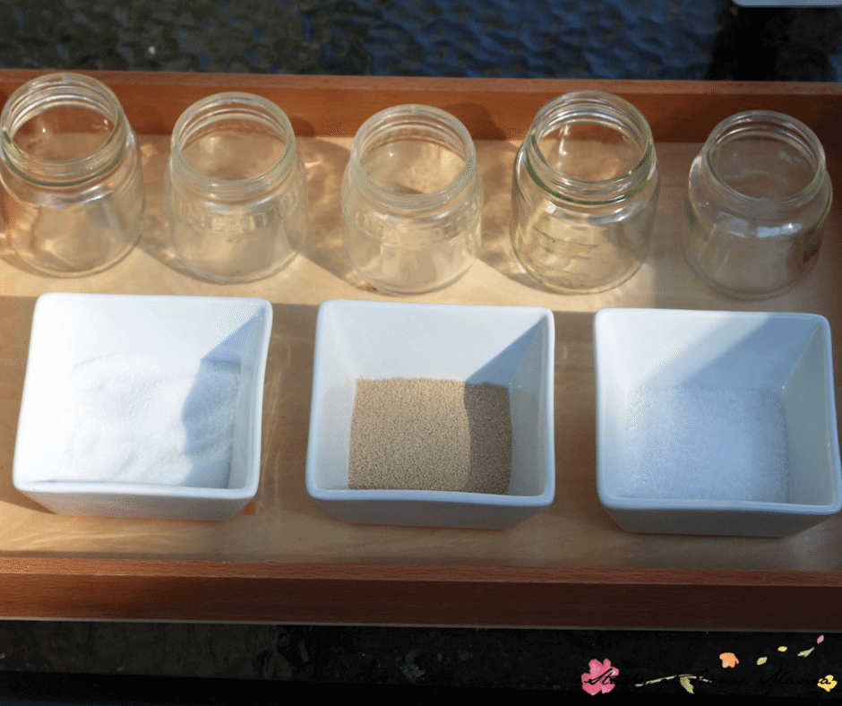 A simple kitchen science experiment for kids - how to activate yeast and what conditions are best for activation