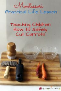 Montessori Practical Life Lesson: Cutting Carrots
