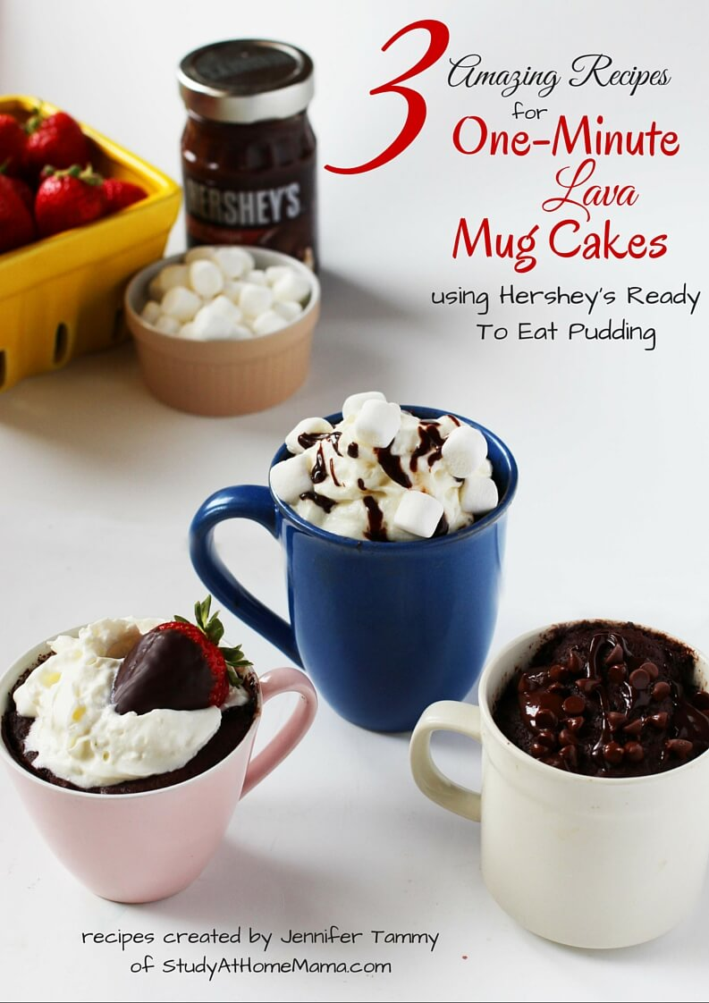3 Amazing Recipes for One-Minute Lava Mug Cakes - a free mini ebook by Jennifer Tammy of StudyAtHomeMama.com