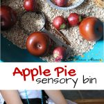 Apple Pie Sensory Bin