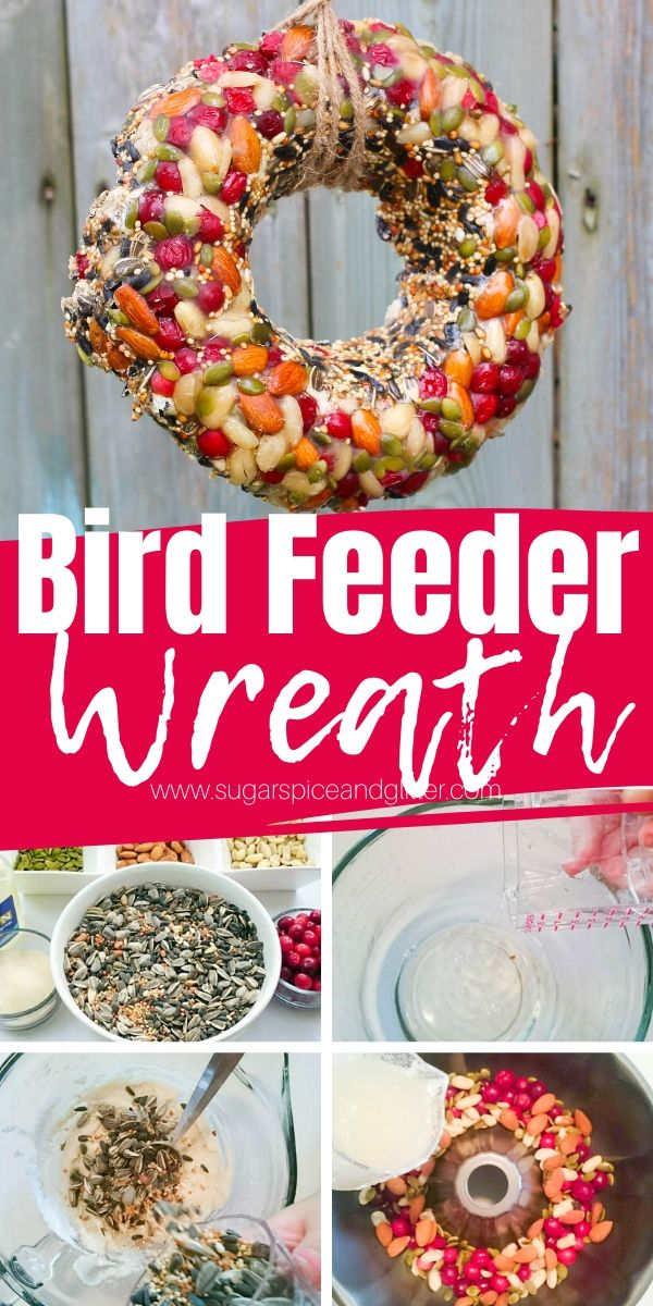 How to make an easy Bird Seed Wreath using everyday kitchen supplies - and some bird seed! A fun way to treat your backyard birds in the Spring or Fall