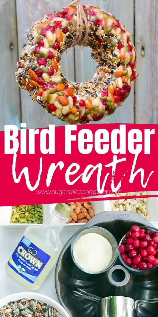 Bring all the birds to your yard with this gorgeous DIY Bird Feeder Wreath, a fun craft for kids and a great homemade gift for a bird lover