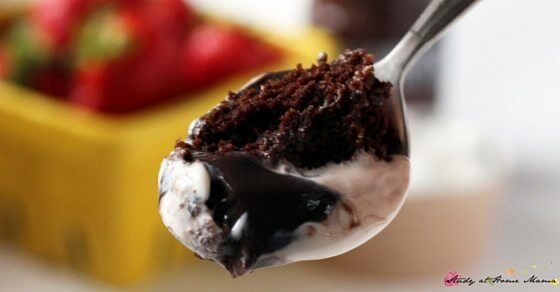 S'mores One-Minute Lava Mug Cake - seriously yummy. A perfect quick dessert when you just want a single portion to satisfy