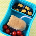 Yellow Submarine Lunch Box Idea