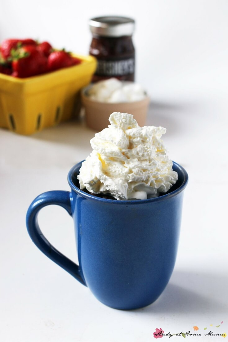 What could make these One-Minute S'mores Lava Mug Cakes even better? A generous pile of whipped cream... Oh you are going to want to make this now.
