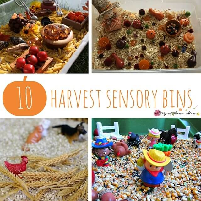 10 Easy Fall Sensory Bins to celebrate harvest with kids. Unique autumn sensory play ideas based on farms