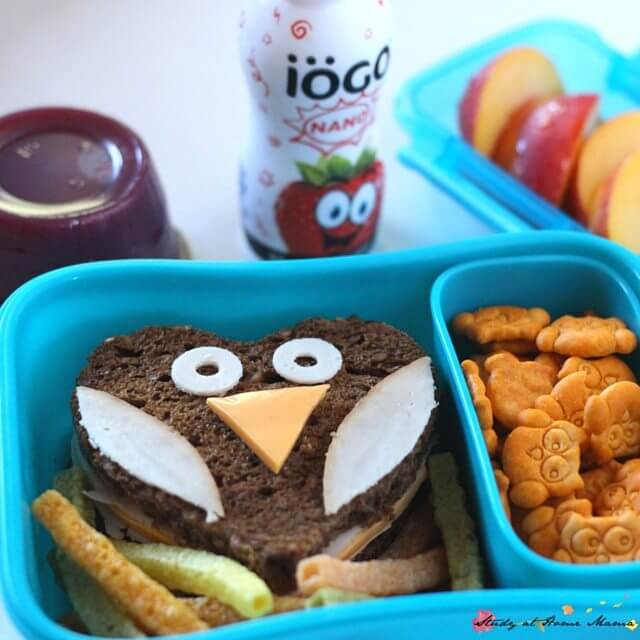 Who ever said cute lunches can't be healthy? This fun owl lunch box idea is super cute, and hits all of the nutrients you want in your child's lunch box