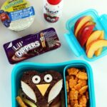 Owl Lunch Box Idea