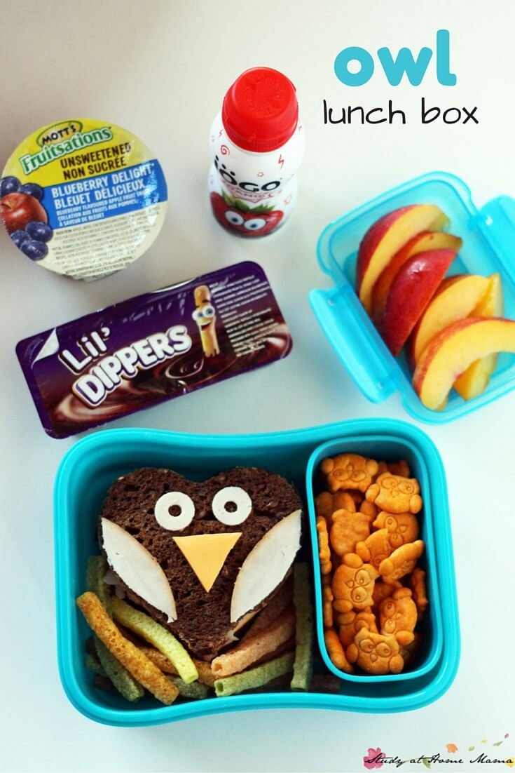 Owl Lunch Box Idea - easy fall-themed lunch box idea for kids. A healthy lunch box idea that is cute, too!