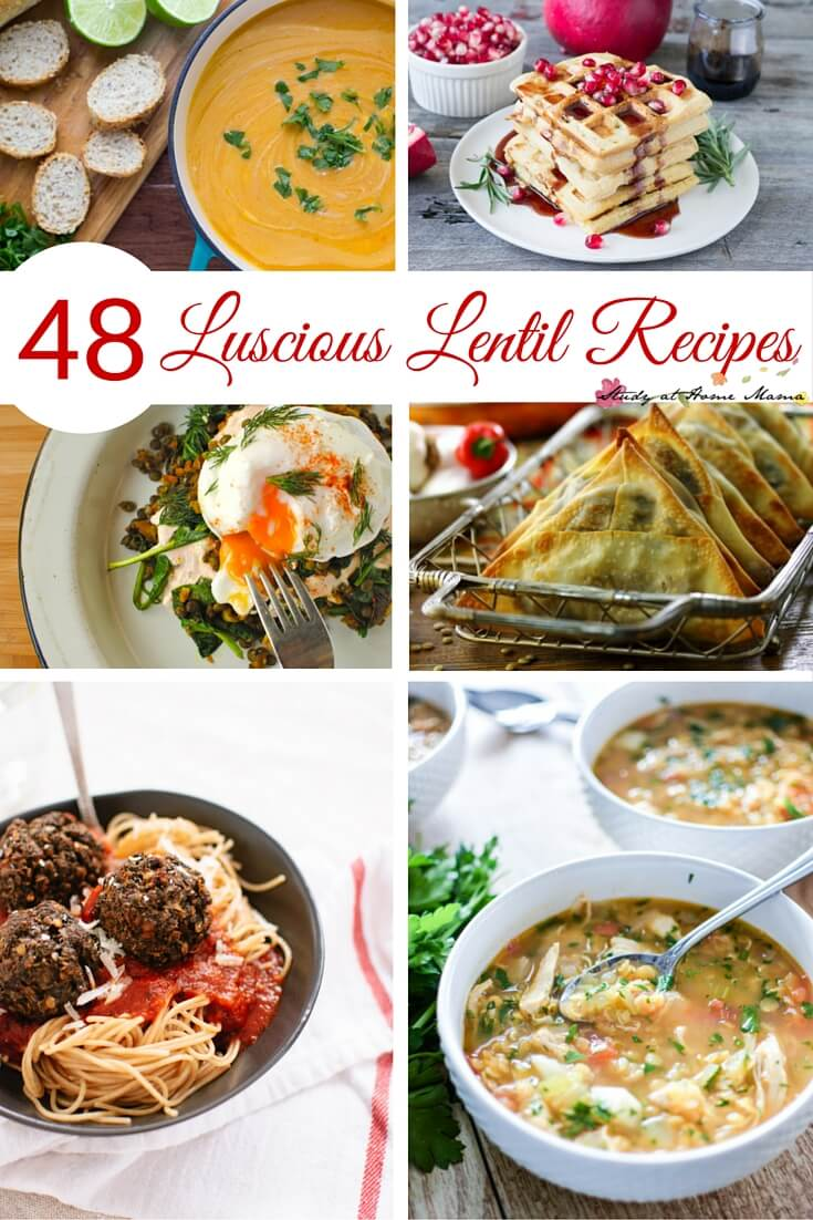 48 Easy Healthy Recipes for Lentils. Everything from lentil breakfast recipes to lentil desserts. Vegetarian meals that even a carnivore would love.