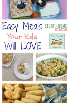 Easy Meals Your Kids Will LOVE