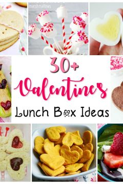 30+ Valentine's Lunch Box Ideas