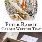 Peter Rabbit Garden Writing Tray