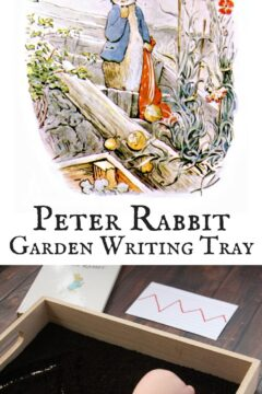 Peter Rabbit Garden Writing Tray
