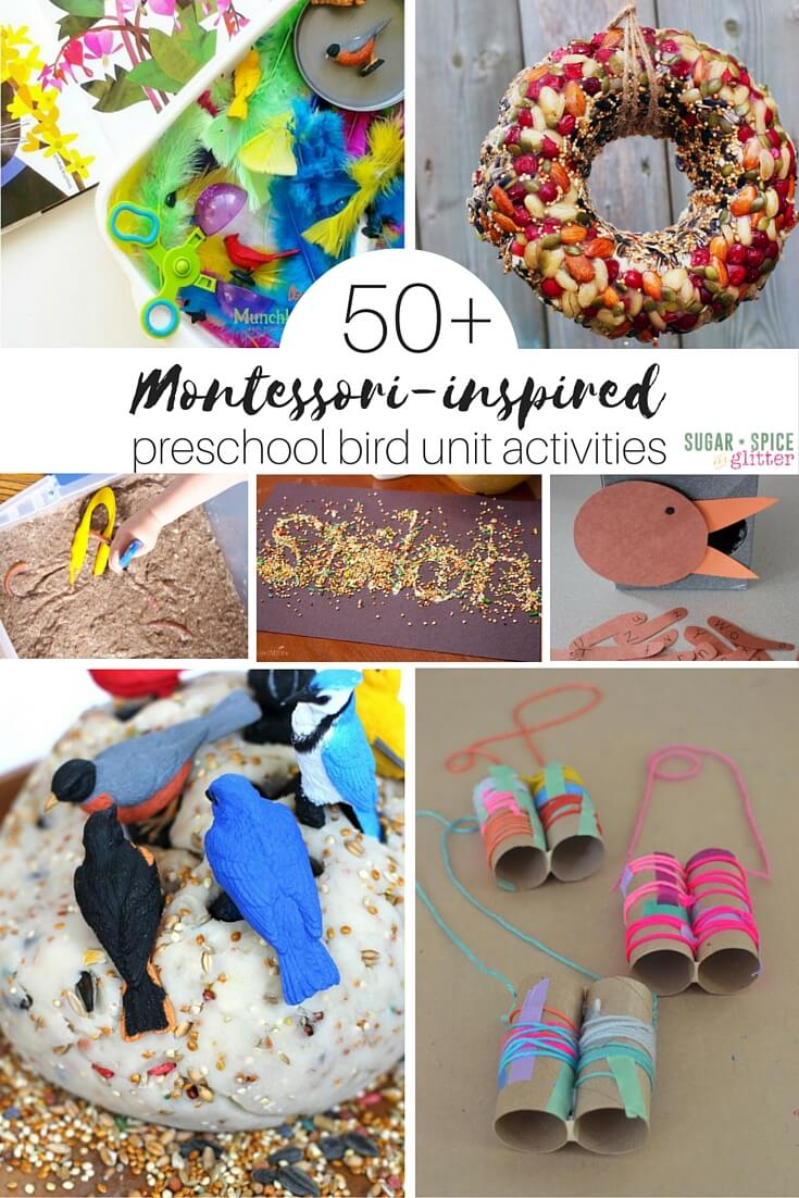 50 Montessori preschool bird unit activities, perfect for Spring or Fall unit studies when kids are obsessed with birds. Includes bird sensory play, language, math, geography, and science experiments. You will never run out of bird activities now