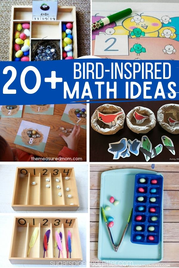 Over 20 Bird-inspired Math Ideas for a Bird Unit Study, plus fun ideas to bring the bird theme into sensory play, practical life, science and art