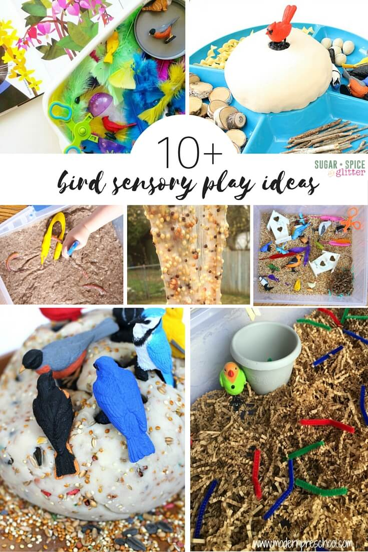 Easy bird sensory play ideas - from sensory bins, to bird seed slime and bird nest making play dough