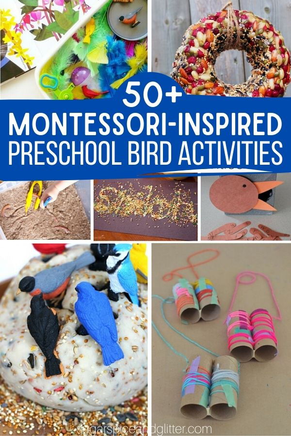 Over 50 Creative Montessori-inspired Activities for a Preschool Bird Unit Study - or just find fun bird activities for your bird loving child. Math, practical life, arts and crafts, and more.