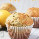 Kids Kitchen: Lemon Poppyseed Muffins