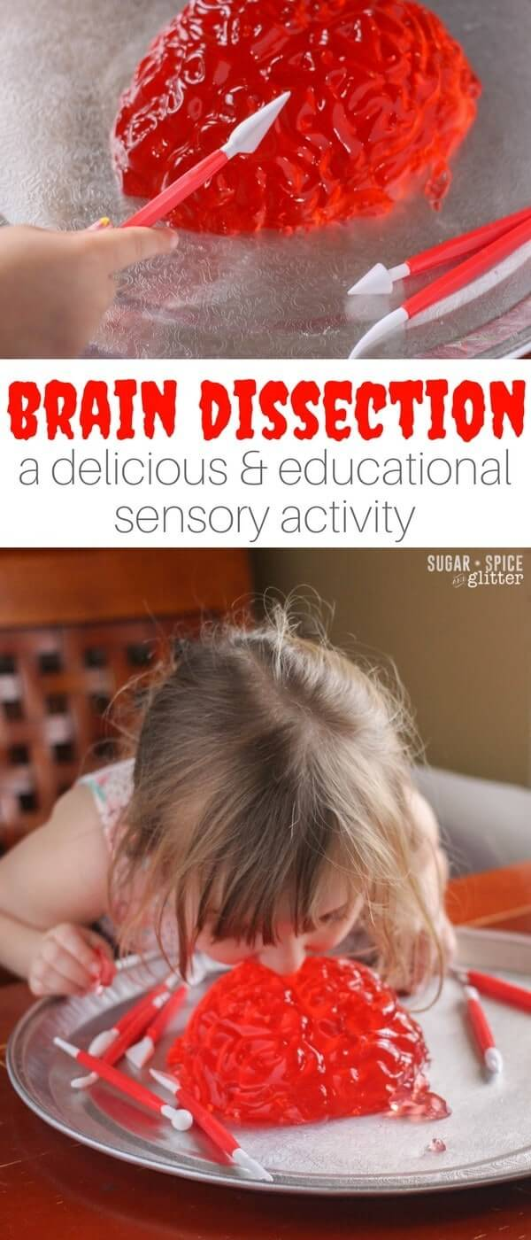 A fun Jell-O sensory play activity, this brain dissection invitation is a great way to teach kids about the human brain and work on fine motor skills, while having some messy sensory fun