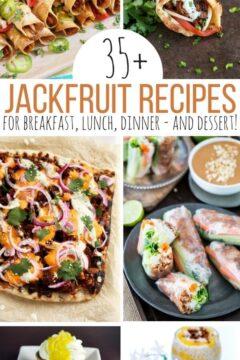 35+ Jackfruit Recipes