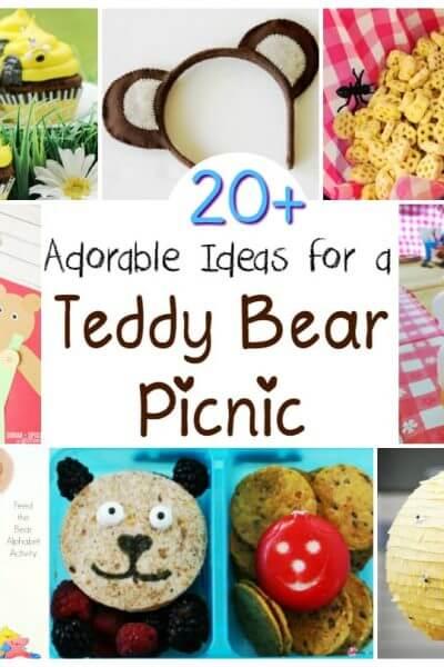 20+ Teddy Bear Picnic Ideas