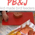 PB&J Bird Seed Ornaments (with Video)