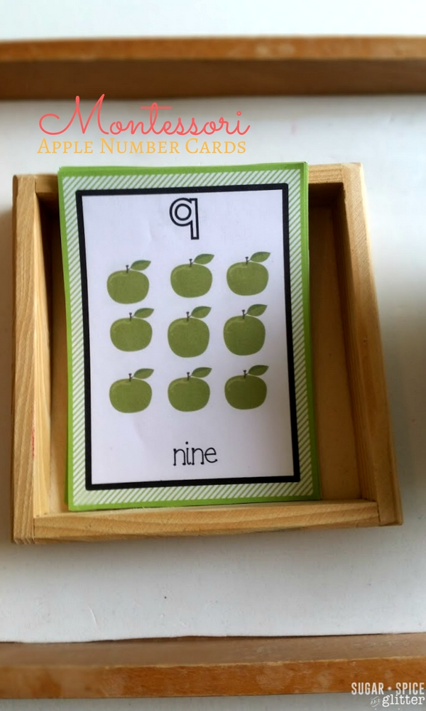 Apple Number Cards for a Montessori Fall unit study activity