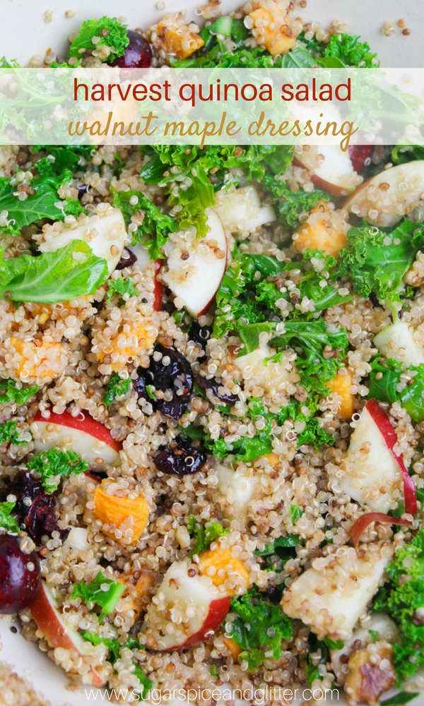 Vegan fall salad recipe with cranberries, apples, quinoa and a creamy maple walnut vinaigrette