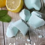 Citrus Mint Shower Melts