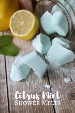 Citrus Mint Shower Melts (with Video)