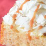 Milk Bar-inspired Dulce De Leche Coconut Cake