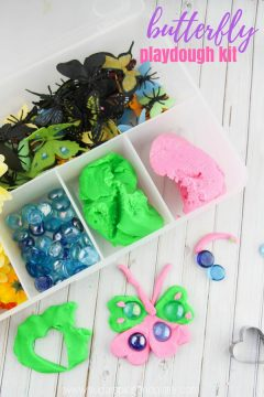 Homemade Butterfly Play Dough Kit