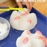 DIY Tooth Models & Tooth Sensory Play (with Video)