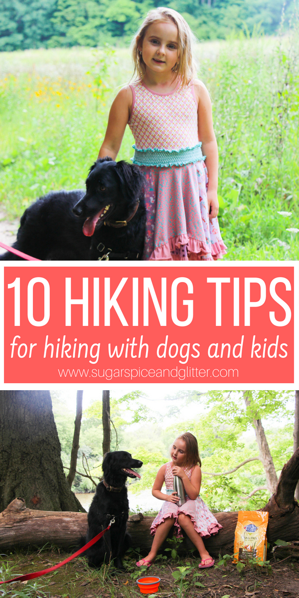 If you are looking for a fun and affordable family activity that includes your dog, these 10 Hiking Tips for Safe Hiking with Kids and Dogs will get you off on the right path!