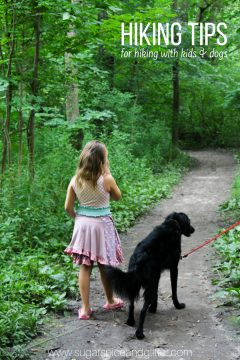 10 Hiking Tips for Dogs and Kids