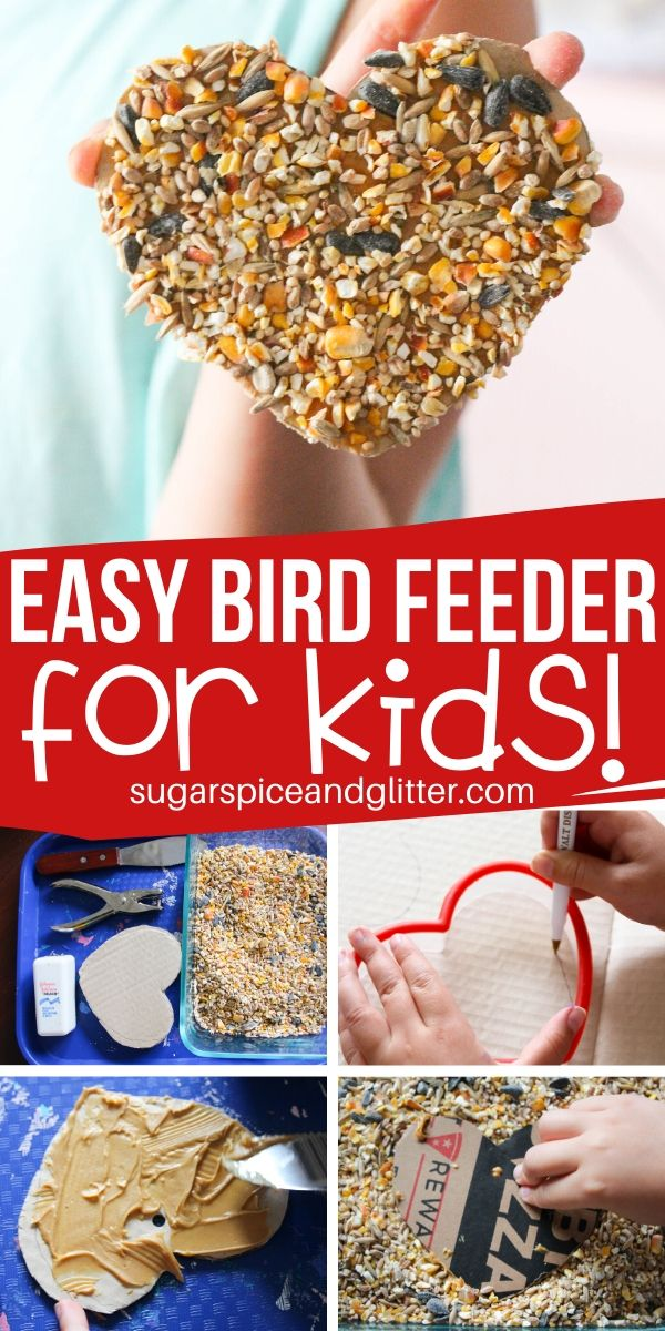This Peanut Butter Cardboard Bird Feeder is a fun way for kids to make cookie cutter bird feeders in any shape they like and then bird watch in their own backyards