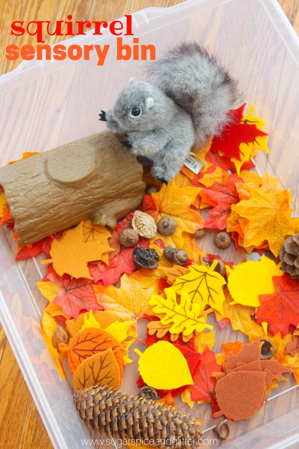 The perfect fall sensory bin after reading a book about squirrels, this squirrel sensory bin for toddlers or preschoolers is always a hit