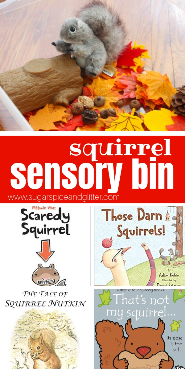 This squirrel sensory bin for preschoolers is perfect to play with after reading one of these classic squirrel books for kids. A Fun fall sensory play idea