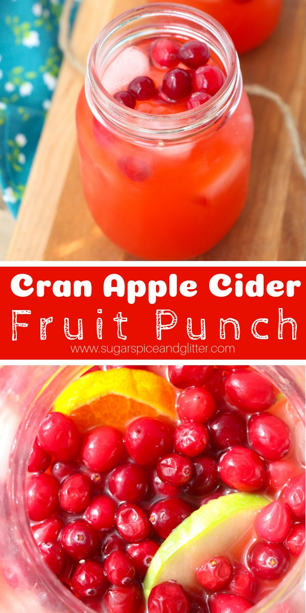 A delicious fall punch recipe the whole family can enjoy, this Cranberry Apple Cider Punch recipe is super simple to whip up and is so fancy for a special fall drink