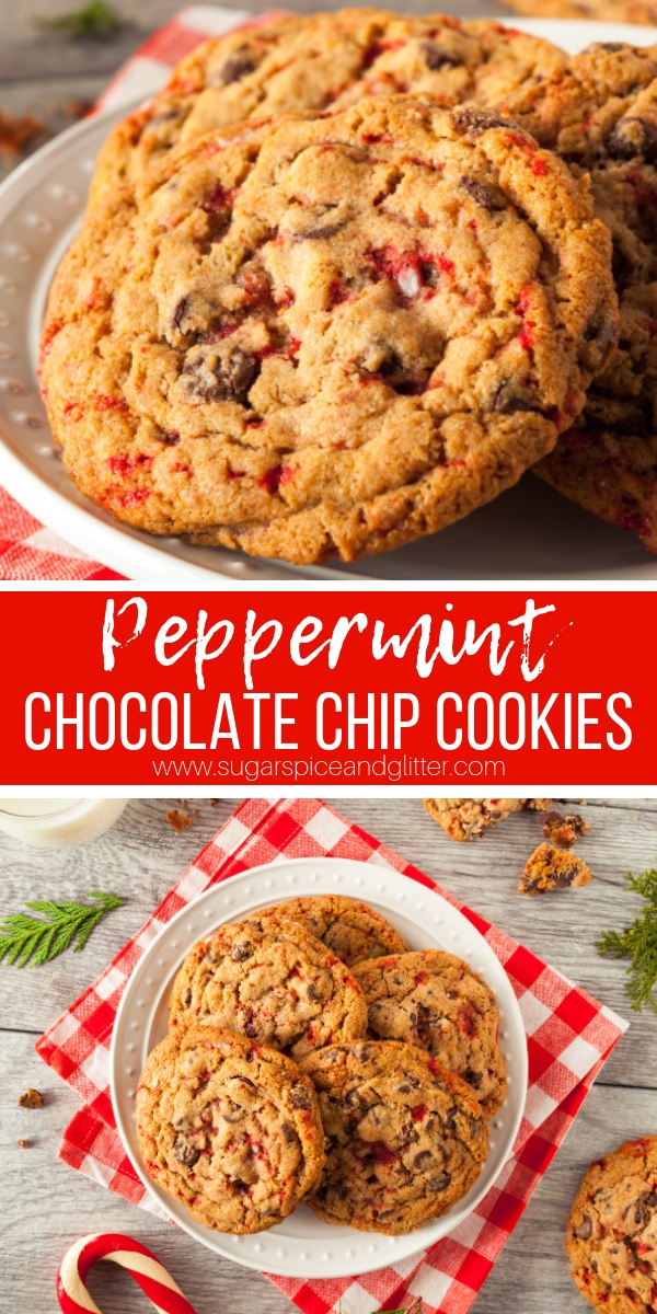 Copycat Disney Peppermint Crunch Cookies - the perfect mix of buttery, chocolatey and MINTY cookies!