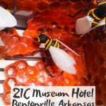 21C Museum Hotel Bentonville Review