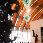 Crystal Bridges Museum Review