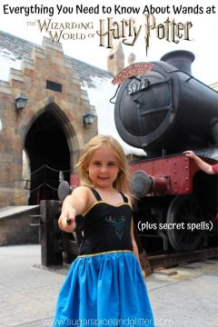 Interactive Wand Experience at Wizarding World of Harry Potter
