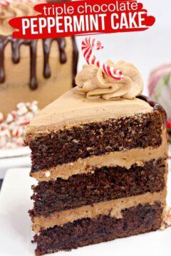 Triple Chocolate Peppermint Cake